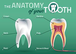 general dentistry img2